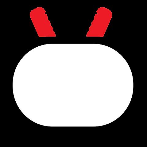 ninja tv.png