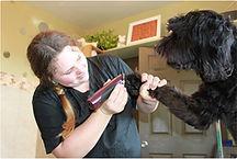 grooming141-1.jpg