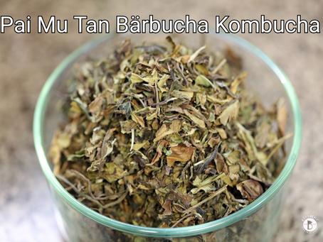 Pai Mu Tan Bärbucha Kombucha