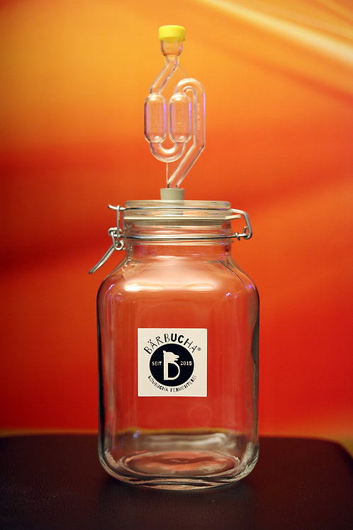 3 Liter Fermentation Glasbehälter