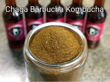 Chaga Bärbucha Kombucha