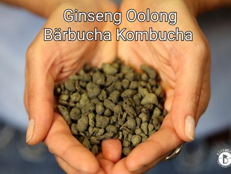 Ginseng Oolong Bärbucha Kombucha
