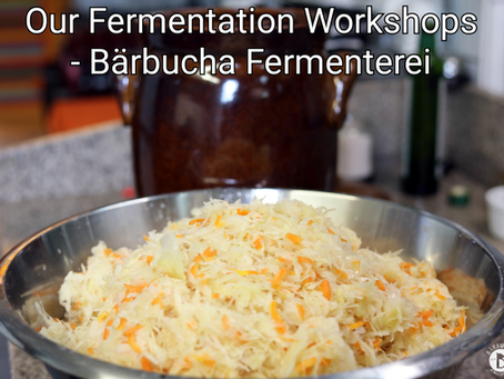 Our Fermentation Workshops! What to expect?