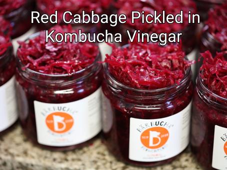 Red Cabbage Pickled in Kombucha Vinegar