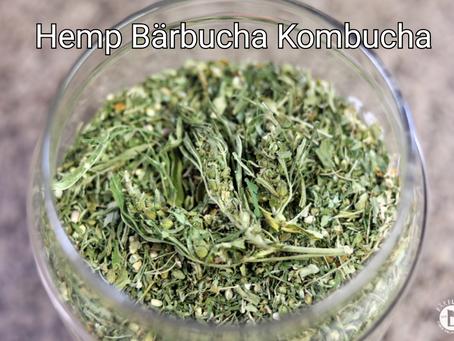 Hemp Bärbucha Kombucha