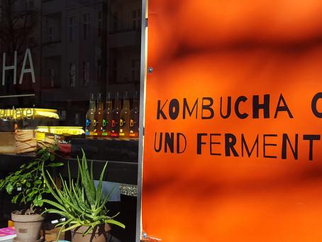 Many Ferments from  Bärbucha Fermenterei!