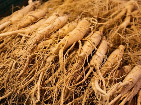 Ginseng - the Energy Booster