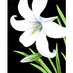 easter_lily_170