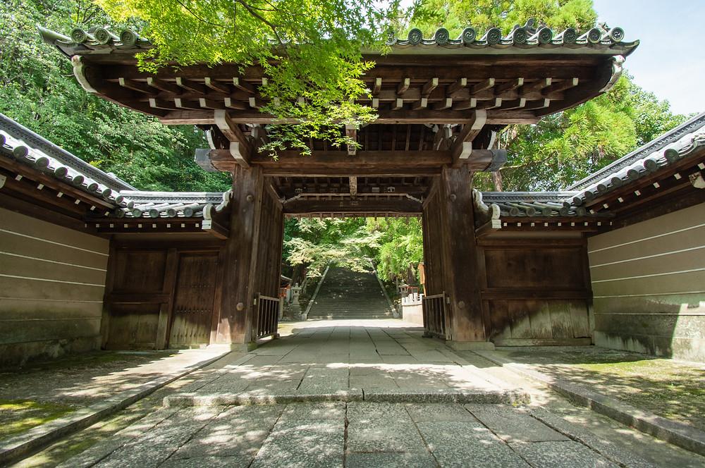 法輪寺の入り口の門、夏らしく青もみじが続く階段は夏も秋も魅力的です。
