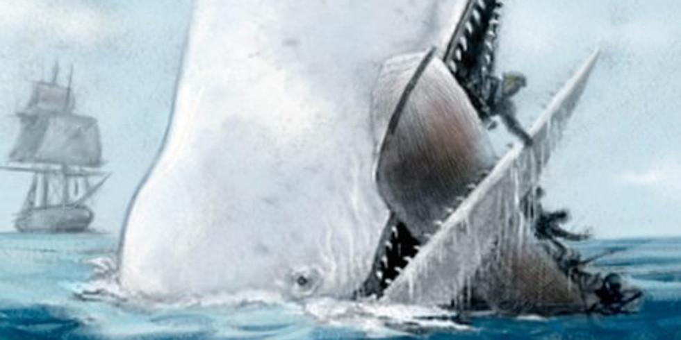 TALK   Buon Compleanno, balena!