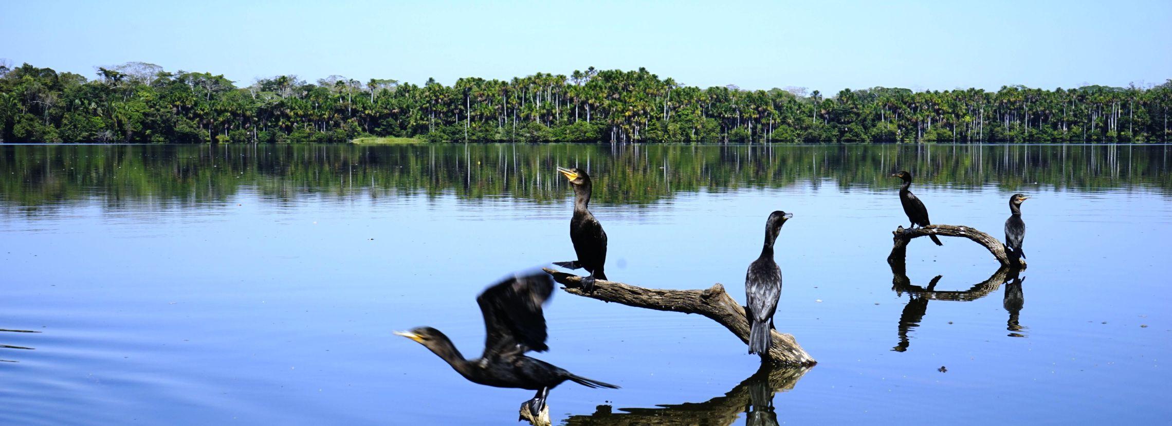 viaggi in 4x4 in peru turismo responsabile peruresponsabile 23.jpg
