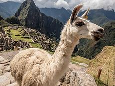 Visita di Machu Picchu con Peruresponsabile