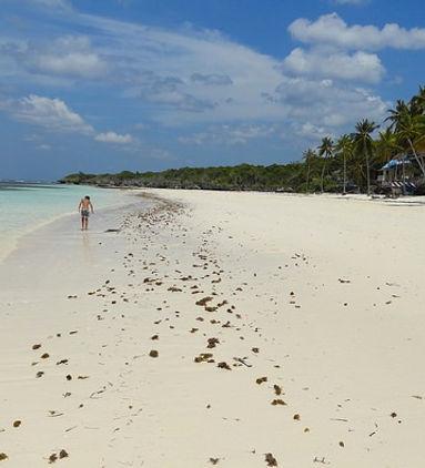 Bira-beach-a-Sud-Sulawesi-in-Indonesia.j