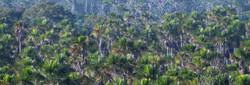 peru in 4x4 peruresponsabile turismo responsabile peru 0112.JPG