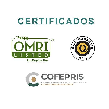 certificados.jpg