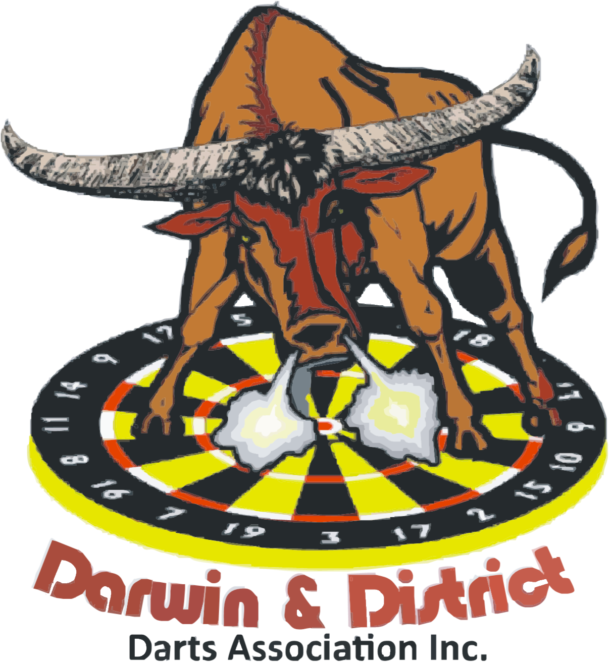 Darwin & District Darts Association