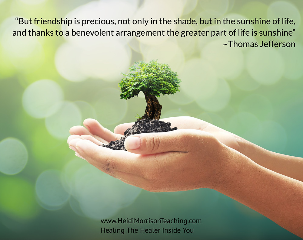 tree#nature#transformation#healing#energy,#love#unconditional love#earth#nurture#flowing#Thomas Jeffersons#Quotes.