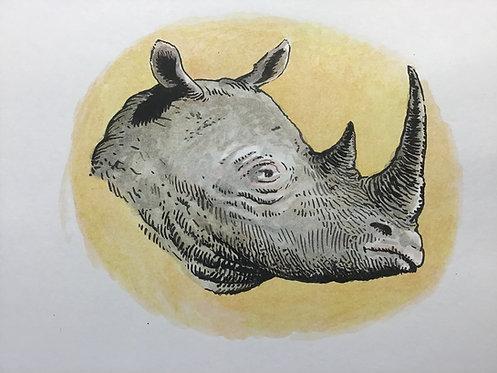 Rhinocersus