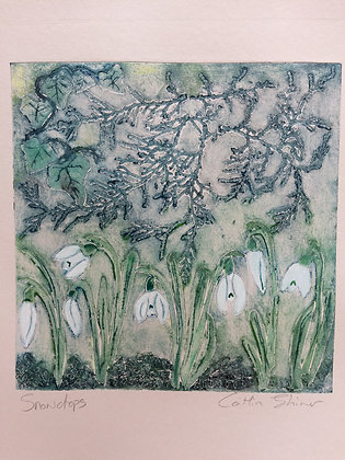Winter Snowdrops I