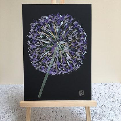 Allium Flower - Black