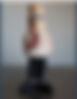 Screenshot_2020-03-11 Animoto - Animoto