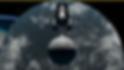 Screenshot_2020-03-22 CNE Canadian Natio
