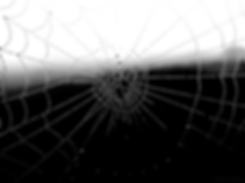 Screenshot_2020-03-10 30 Astonishing Pho