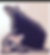 Screenshot_2020-02-27 Epic Video on Agen