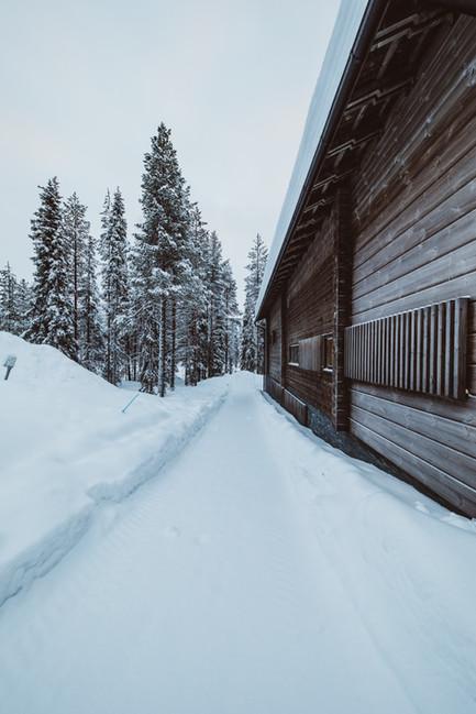 aaltolevi talvi-13.jpg