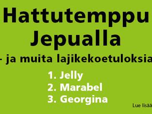 Hattutemppu Jepualla - Finpomin lajikkeet kirkkaasti satoisimpia!