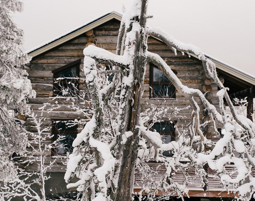 Levin Kojamo, talvi