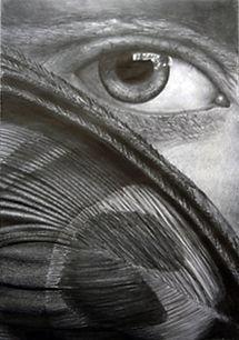peacock eye.jpg
