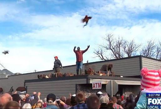 Wisconsin, Rednecks, and Chickens