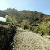 Solar Fencing System for Keval Organic Farms in Nainital, UTTARAKHAND