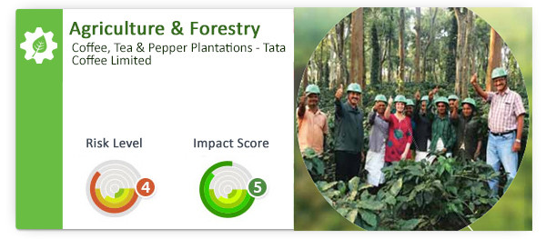 Impact Investment - Tata Coffee Limited