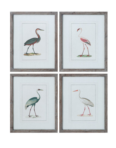 Vintage Reproduction Bird Image Wall Décor in Grey Wood Frame (Set of 4)