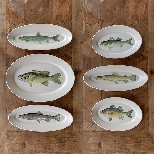 Collected Fish Platters (Set of 6)