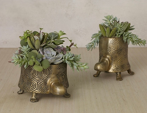 Brass Turtle Planter - High