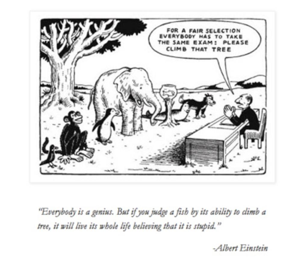 einstein-exam-cartoon