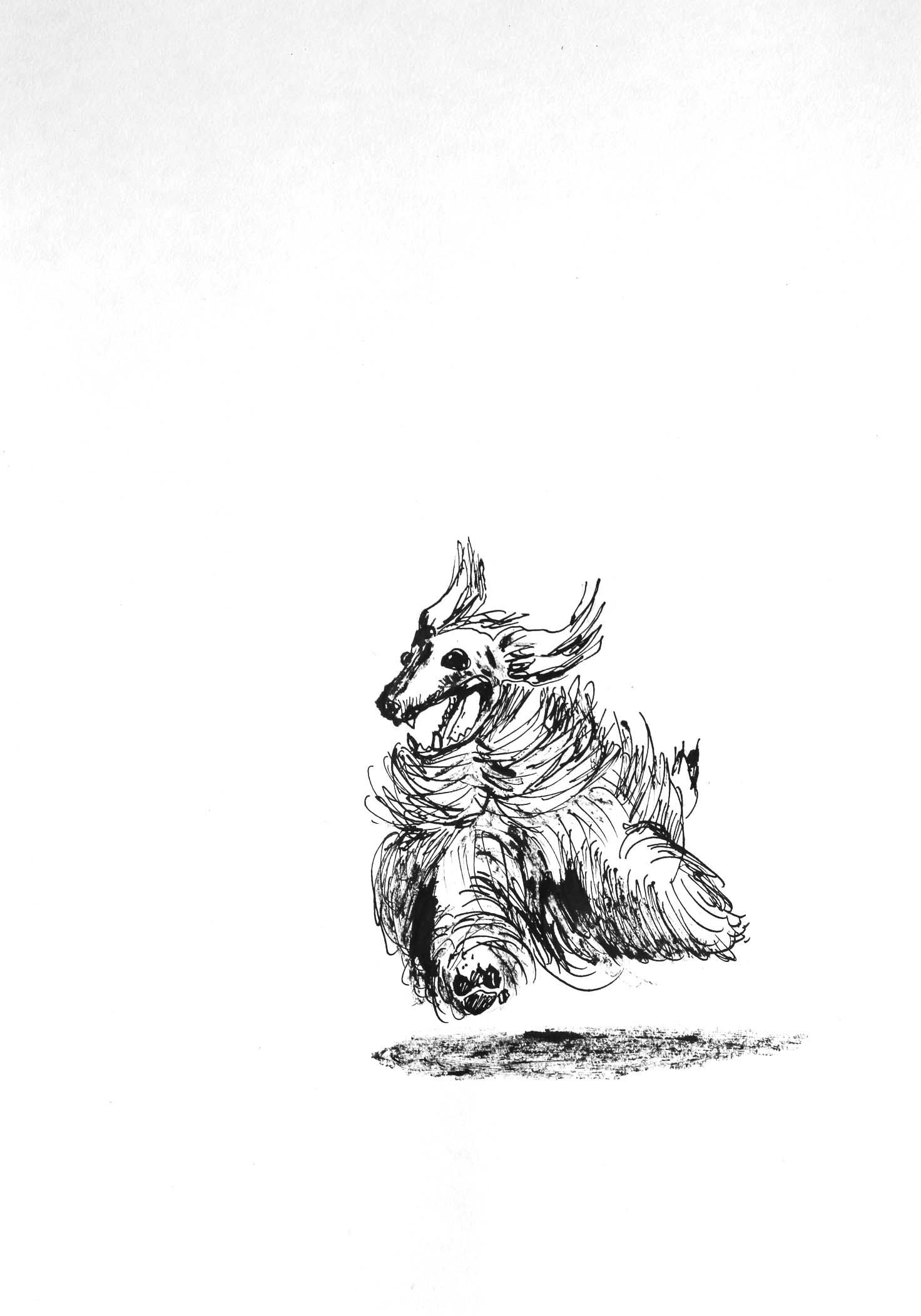 Furry Dog