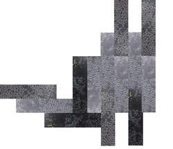 Customized Carpets