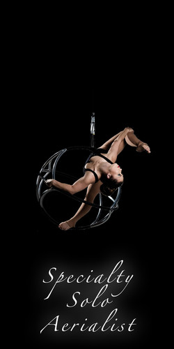 specialty aerialist