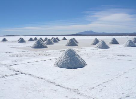 SALT is good for your (organizational) health