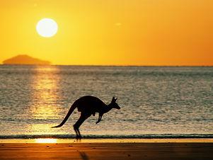 australian outback.jpg
