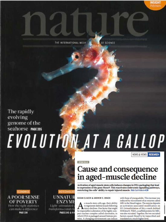 Dr. Andrew Brack and Dr. Susan Eleazar were published in the December 2016 issue of Nature Magazine.