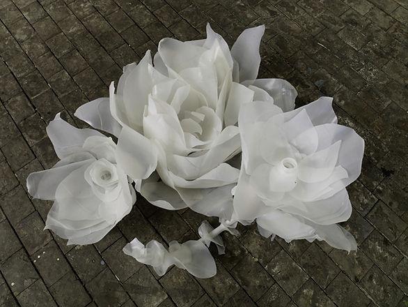 Floral Reverie.jpg