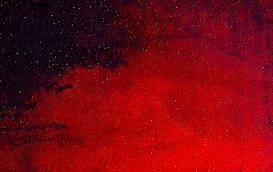 cosmos detail 2smll.jpg