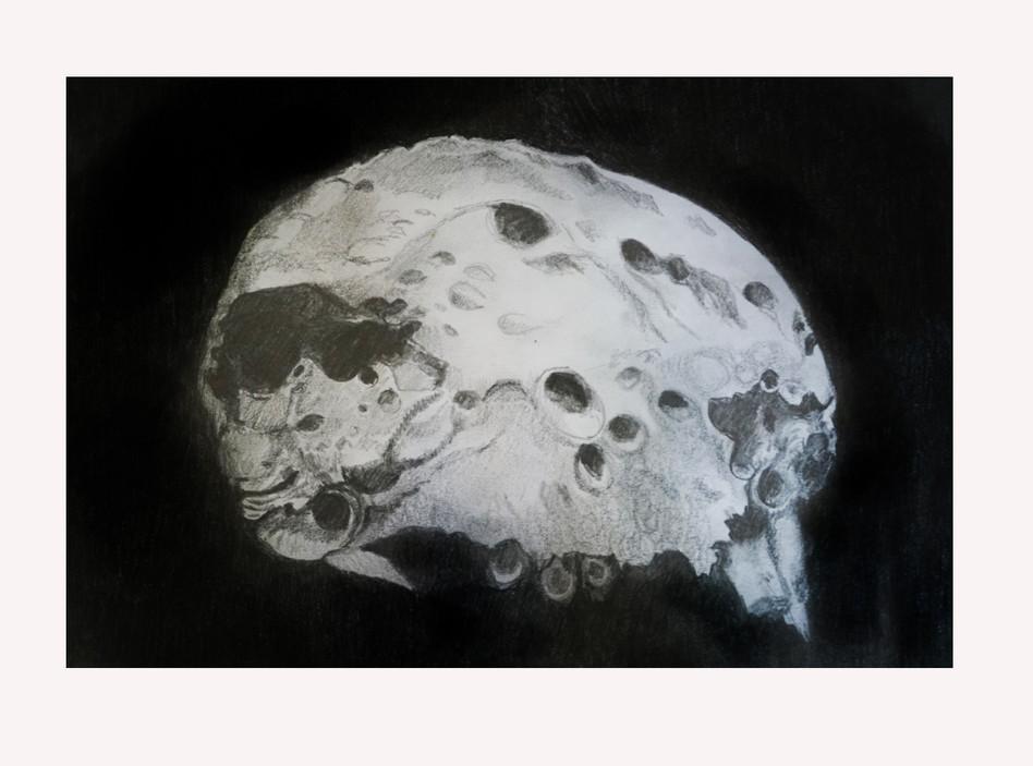 Skull Asteroid.jpg