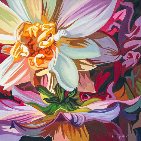 Decorative Dahlias