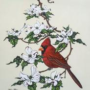 Cardinal in Dogwood